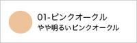 Say ピュアリータッチファンデーションN(詰替用)