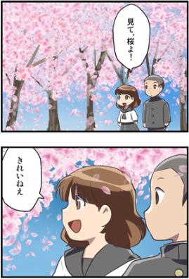 SAKURA②