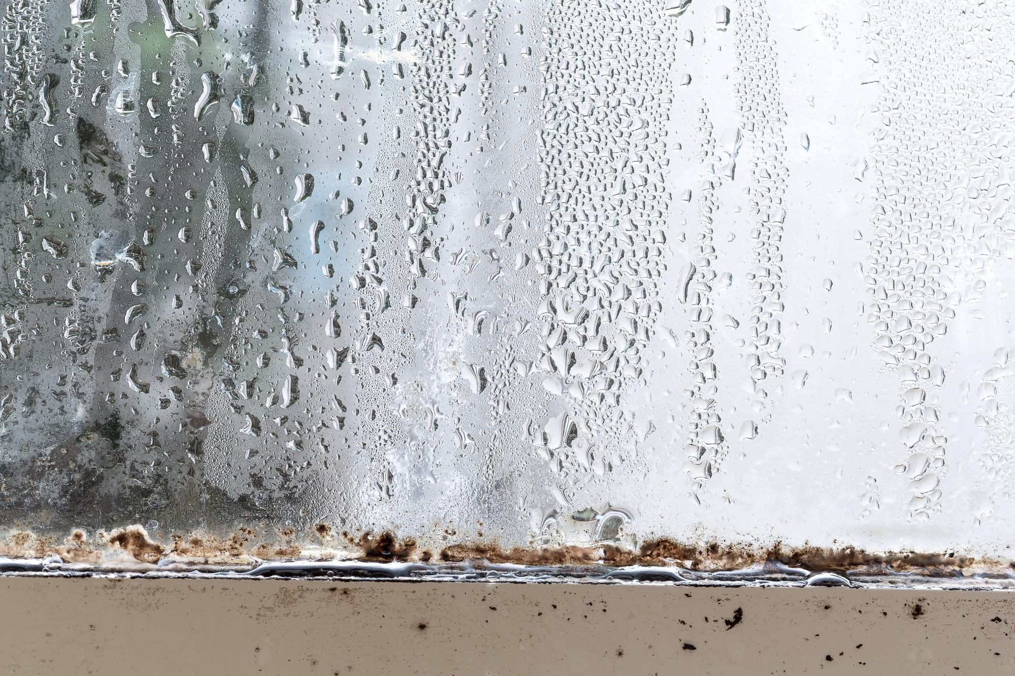 家の中に湿気がこもりがち