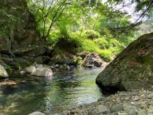 渓流釣りとイワナセンター