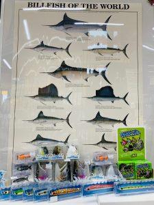 安芸広島店のお魚グッズ★