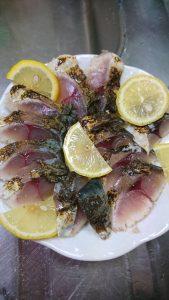 酒田港外海ではサワラと良型のサバが釣れています♪
