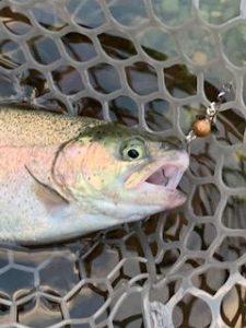 相変わらず好釣!