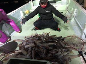 ☆イカを釣ってみました☆