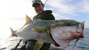 【釣果情報】磯からメーターオーバーのヒラマサを釣るお話