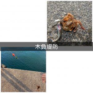 ☆冬の堤防釣りin静岡☆