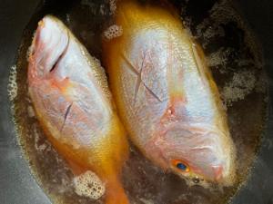 釣ったお魚で料理🐟 by 瀬戸麻楡