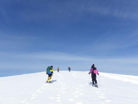 マキノ高原キャンプ場でスノーシューをしている人たちの写真
