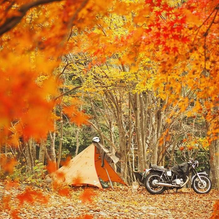 キャンプ場でのバイクとテント