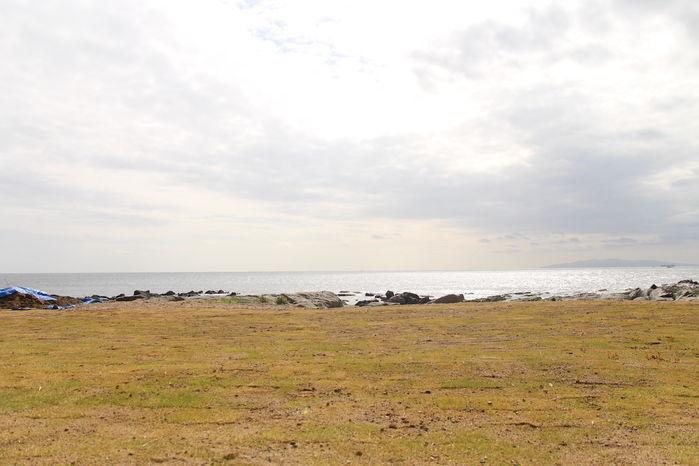 フラワー パーク 天気 白浜