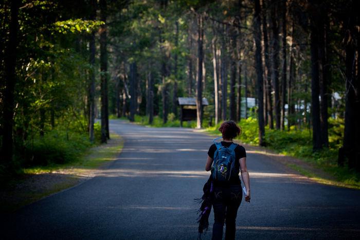 舗装された森の道をサイクリングしている女性の写真