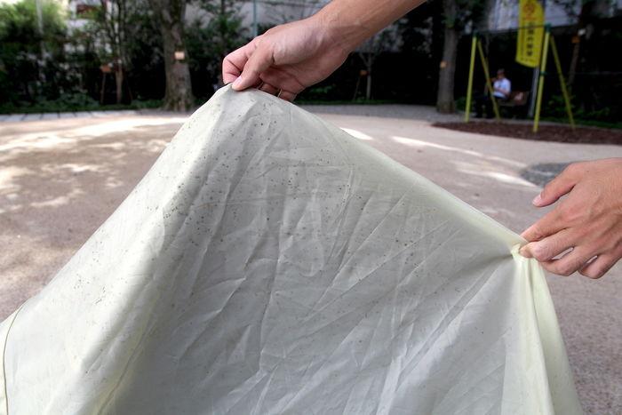 カビの生えたテント