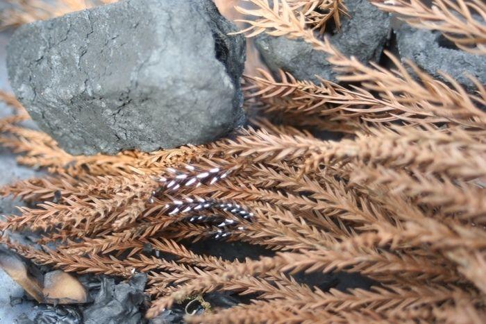 炭と落ち葉