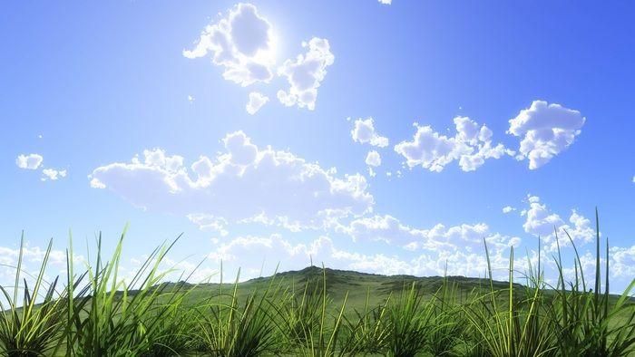 快晴の空ろ綺麗な緑の写真