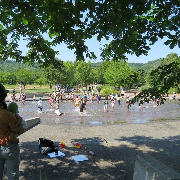 十勝エコロジーパークで遊んでいる子供達の写真