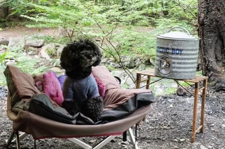 【キャンプの輪】ひきこもりキャンプ!?「こだわりの空間作り×愛犬」で最高の時間を