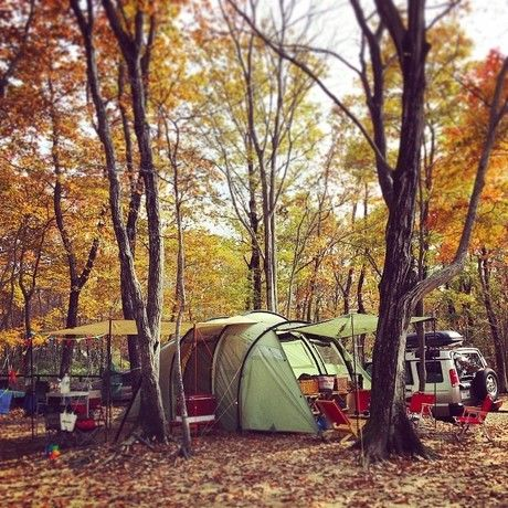 紅葉の中にテントが張ってある。