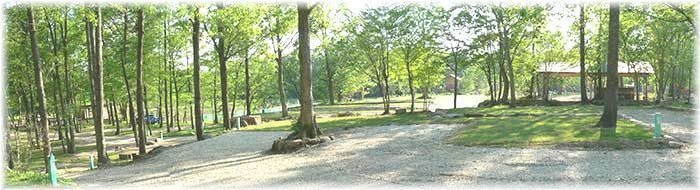 那須高原オートキャンプ場のテントサイトの写真