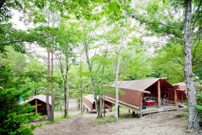 ライジングフィールド軽井沢のオリジナル常設テントの写真