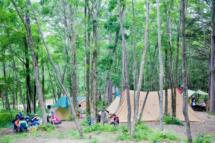 ライジングフィールド軽井沢の野営フィールドの写真