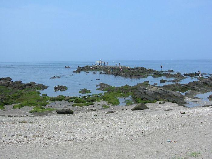 砂浜から海を見ている写真