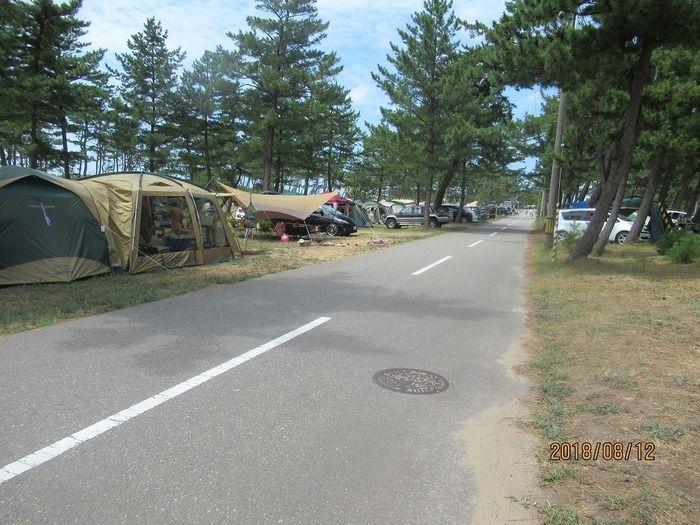 大島キャンプ場のテントサイトの写真