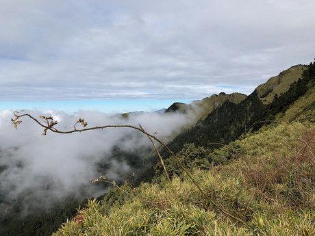 山から曇が見える様子