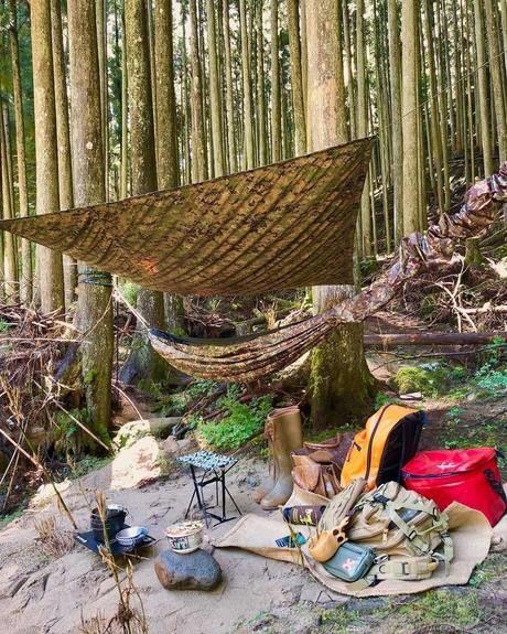 自然の中のキャンプサイト