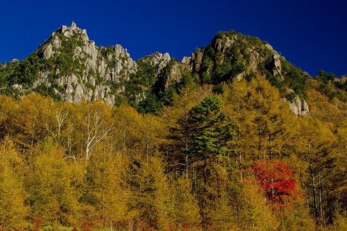 自然豊かな秋の山