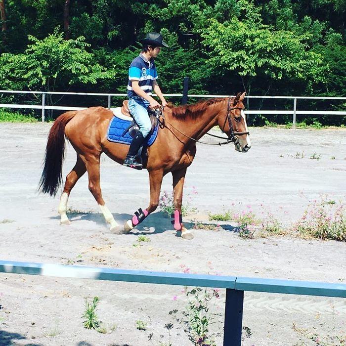 星の降る森の乗馬体験