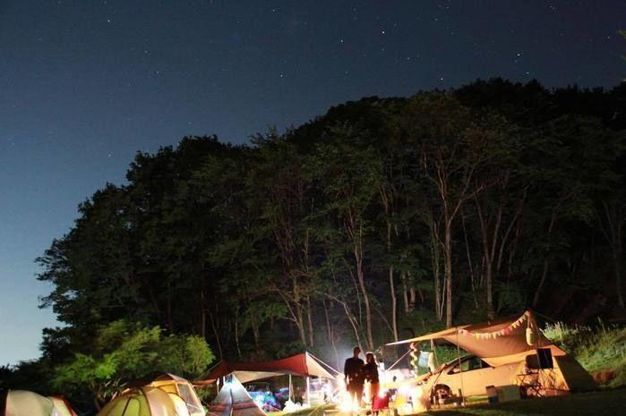 星の降る森の夜空