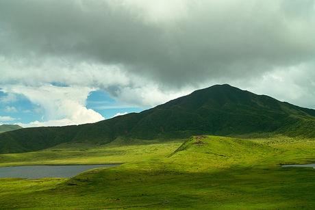 一面緑の山の写真