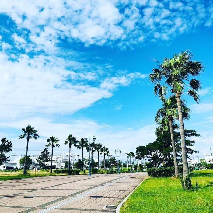 二色浜の海沿いの道の写真