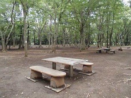 東京公園協会の広場のベンチの写真