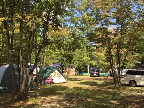 日光・まなかの森 キャンプ&スパリゾートのテントサイトの写真