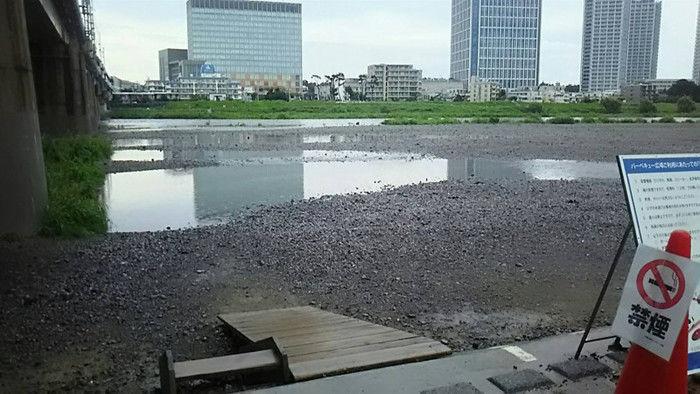 多摩川緑地バーベキュー広場の写真