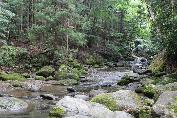 清川リバーランドの側の川の様子