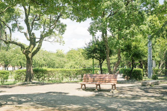 公園のベンチの写真