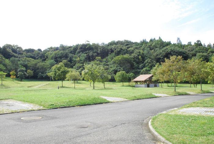 菰沢公園オートキャンプ場の綺麗な芝生の写真