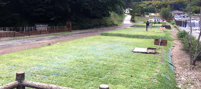芝生の道になっている写真
