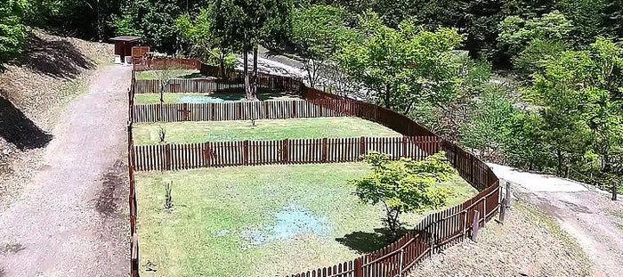 芝生のドッグランサイト