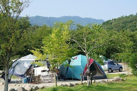 OKオートキャンプ場のテントサイトの写真