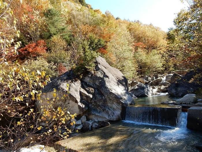 紅葉した木々の脇を流れている渓流