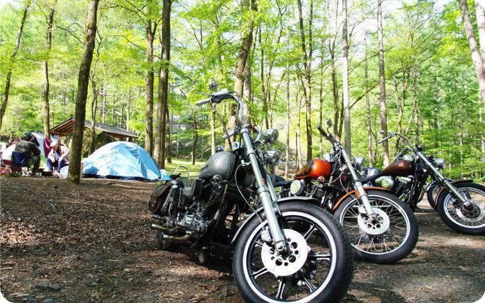 まほーばの森に止めてあるバイクの写真