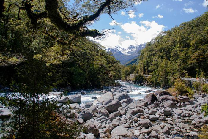 川の上流の写真