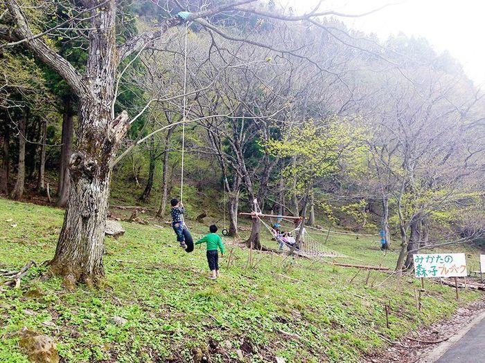 とちのき村の自然のアクティビティをしている子供達の写真