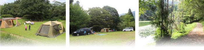 池の山キャンプ場の場内の様子
