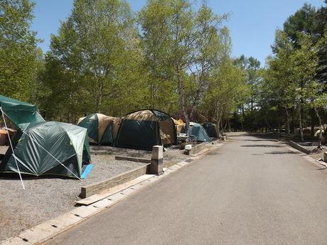 清里中央オートキャンプ場のテントサイトの写真