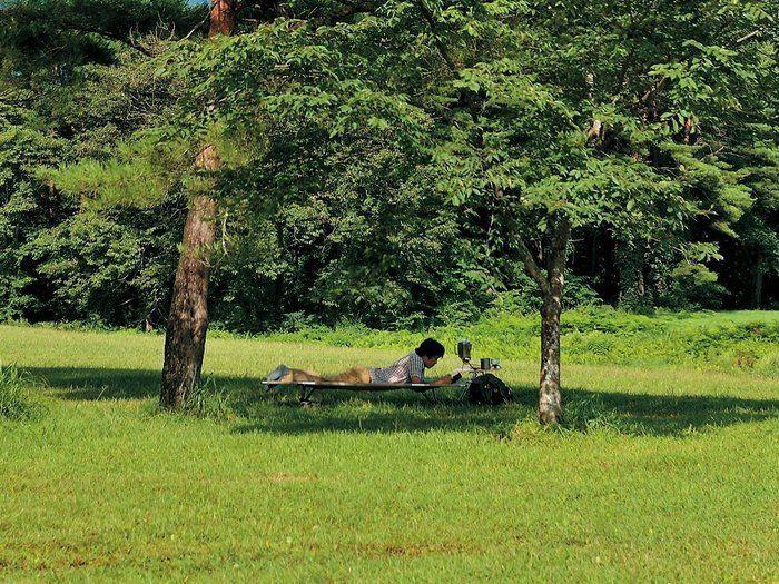 公園でコットに寝転がる人