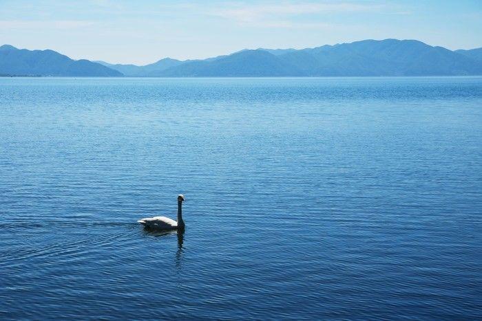 おおぐて湖キャンプ場の湖の写真